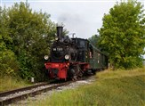 Black Forest Steam & Meiningen Steam Festival