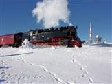 Bavarian & Harz Mountains Festive Steam