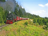 Harz Mountains Summer Steam Explorer