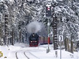 Harz Mountains & Rübeland Festive Steam