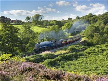 "<img src=""2832_nigel-gresley-@-darnholme-september-2014(1).jpeg"" alt=""North York Moors Railway""/>"