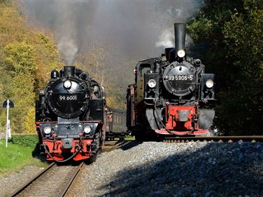 Golden Harz Steam & More