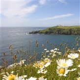The Cream of Cornish Coasts & Country