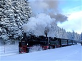 Harz Mountains Winter Wonderland