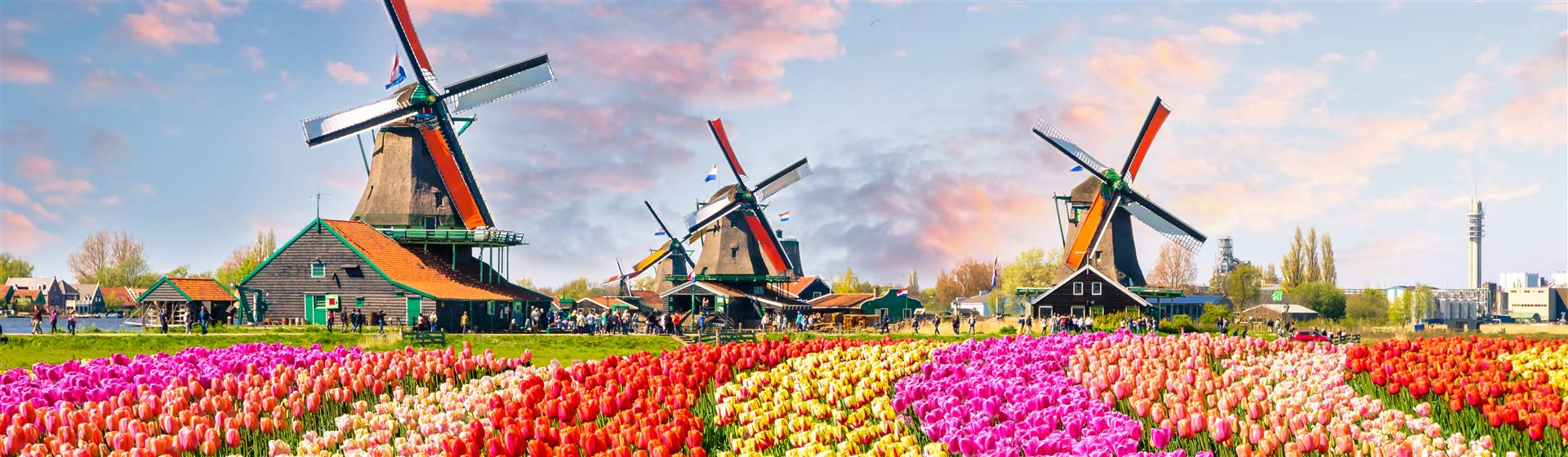 "<img src=""tulipswindmills©shutterstock.jpeg"" alt=""Windmills and Tulips""/>"