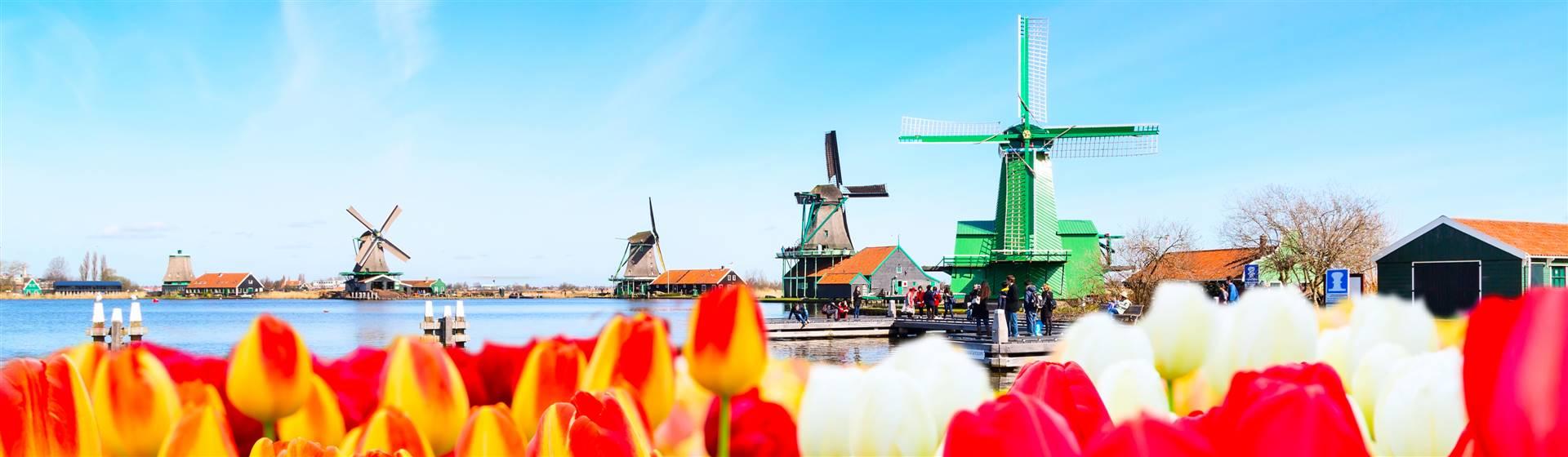 """<img src=""""netherlands-shutterstock.jpeg"""" alt=""""Netherlands""""/>"""