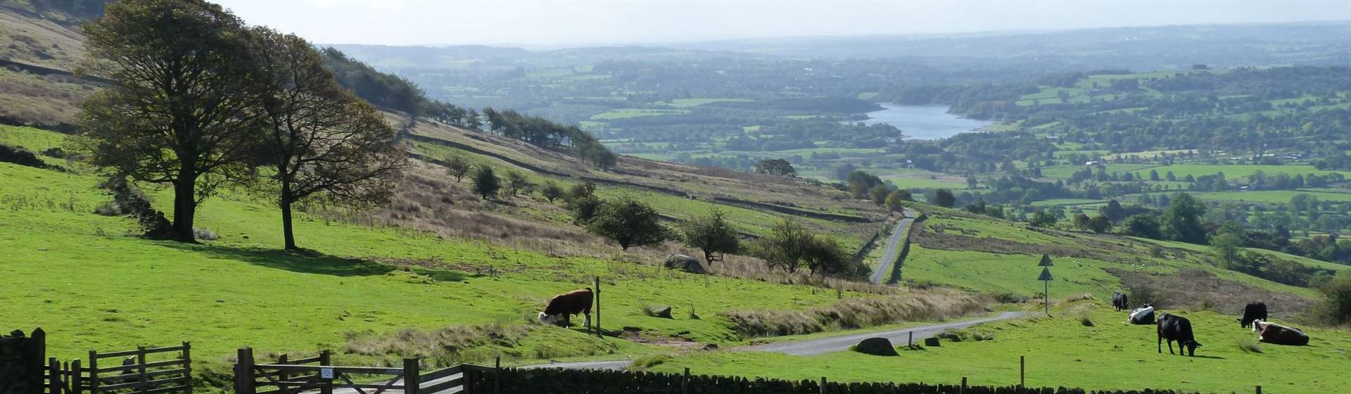 "<img src=""staffordshiremoorlands.jpeg"" alt=""Staffordshire Moorlands""/>"