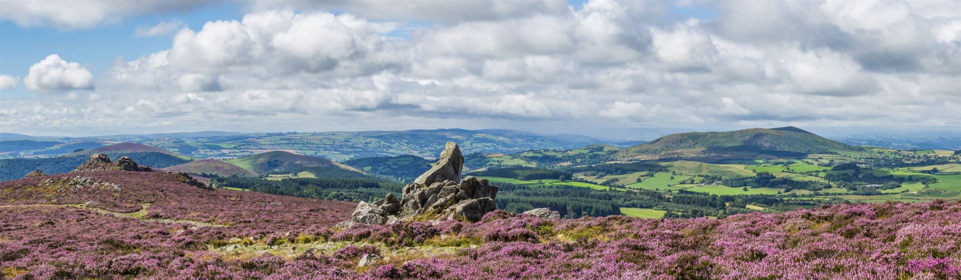 """<img src=""""view-from-stiperstones-to-corndon-hill-shutterstocklr.jpeg"""" alt=""""View of Shropshire""""/>"""