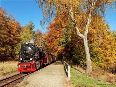 Europe Autumn