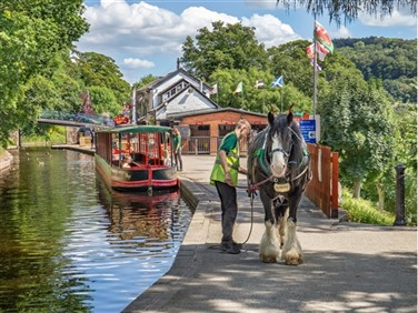 "<img src=""canalspossibleimage.jpeg"" alt=""Horse Pulling Canal Barge""/>"
