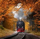 UK Autumn